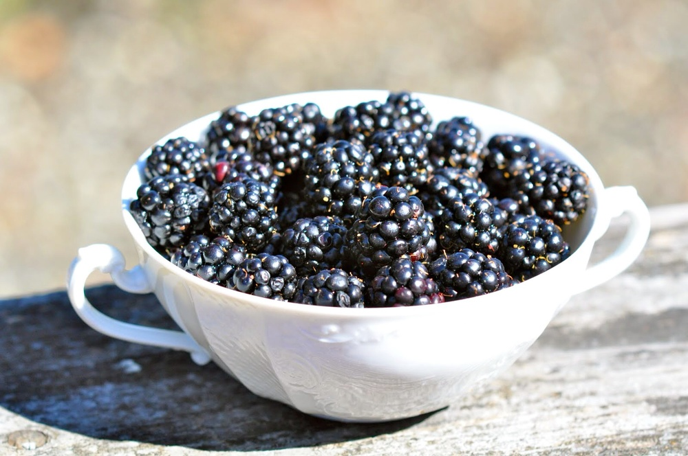 Blackberry-Fresh-Produce-Group-Us.jpg