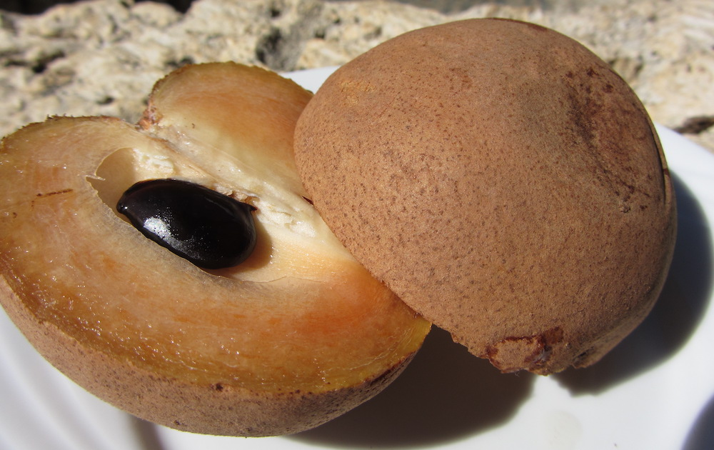 Chicozapote fruit