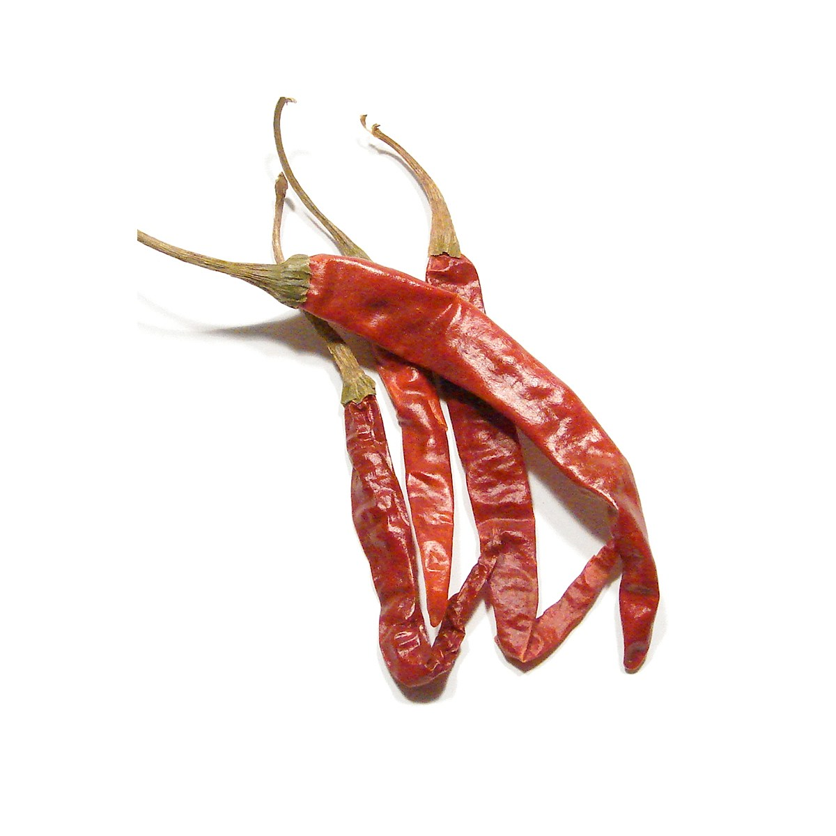 ARBOL-CHILE-PEPPER