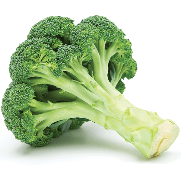 FRESH BROCCOLI CROWN